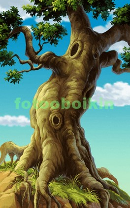 Высокий старый дуб