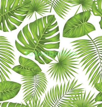 Тропическая листва