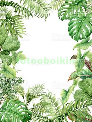 Тропические кусты