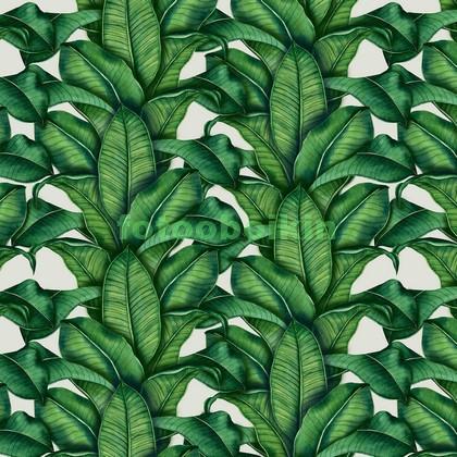 Тропические листики