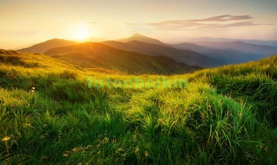 Фотообои Трава в горах