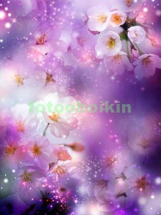 Яблоневые цветы