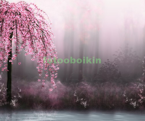 Сакура дерево у воды