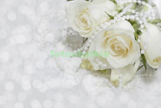 Фотообои Белые розы на светлом фоне