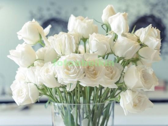 Фотообои Белые розы в вазе