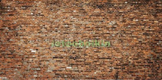 Стена из старых кирпичей