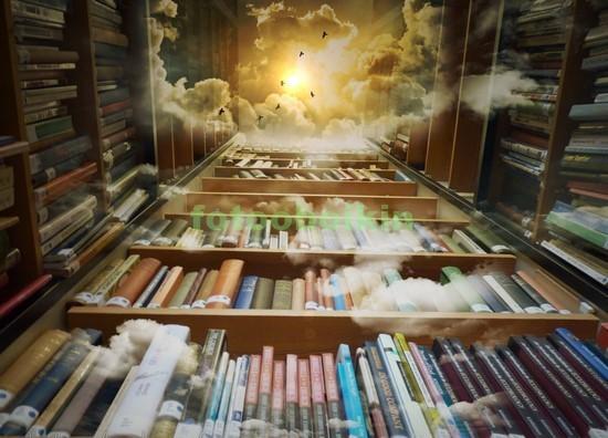 Большая библиотека с книгами