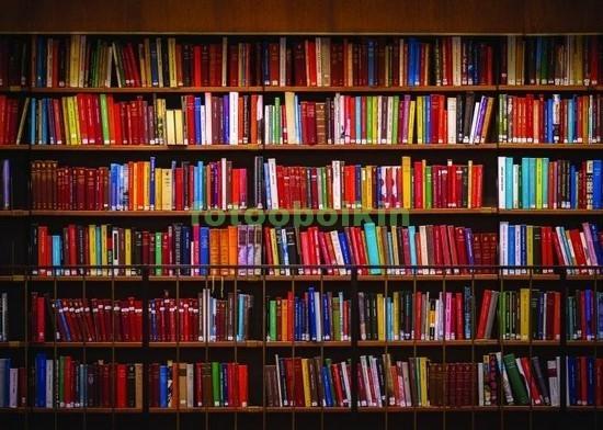Полки с яркими книгами