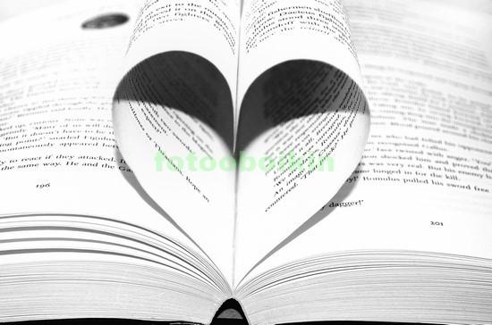 Книга со страницами