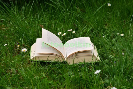 Книга на лугу