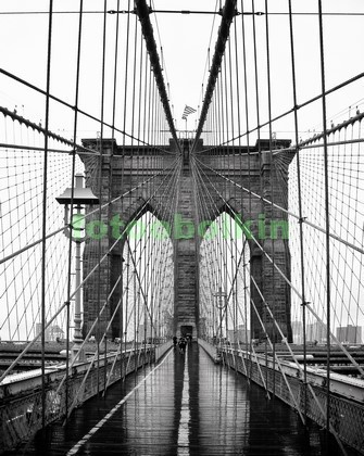 Бруклинский мост в чб