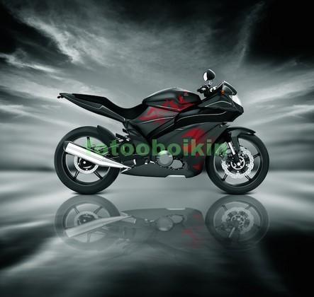 Фотообои Мотоцикл на льду