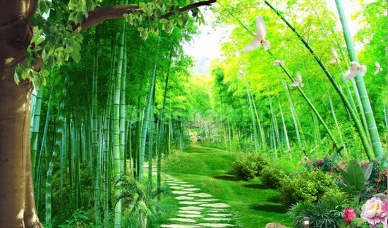Сад в Китае