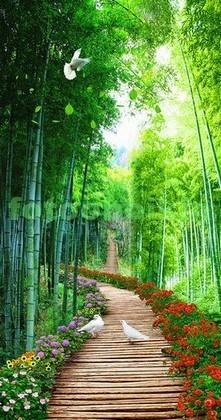 Фотообои Сад с бамбуком