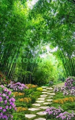 Сад с тропинкой