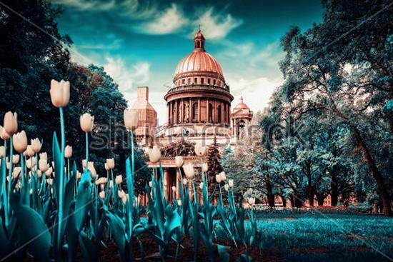 Тюльпаны в Санкт-Петербурге