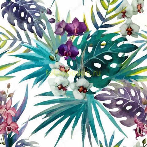 Орхидея и растения