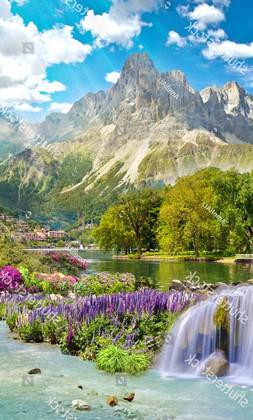 Горы с фантаном и розовыми цветами