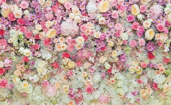 Поляна из розовых и желтых цветов