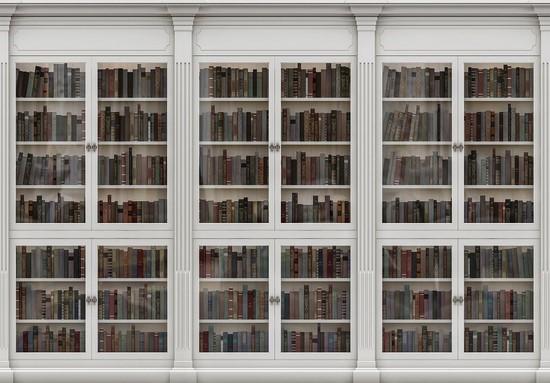 Фотообои Библиотека белая