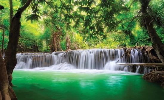Зеленый водопад в лесу