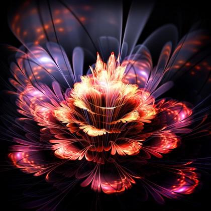 Абстрактный цветок на черном фоне