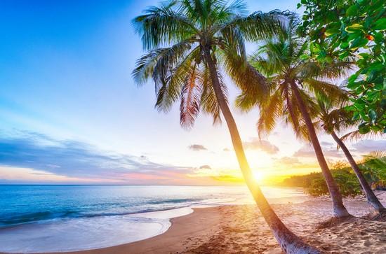 Пальмы, закат, море