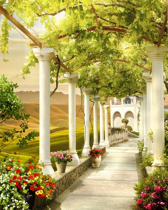 Виноградная дорога