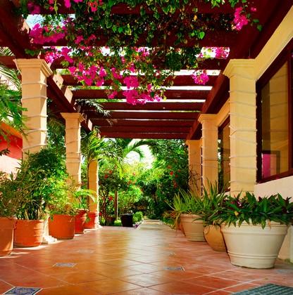 Терраса с розовыми цветами и кувшинами
