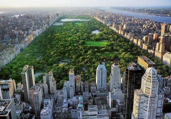 Парк в Нью-Йорке с птичьего полета