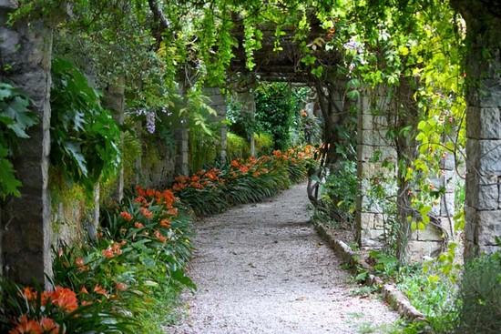 Зеленая аллея с цветами оранжевыми