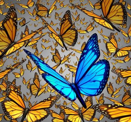 Желтые бабочки и голубая