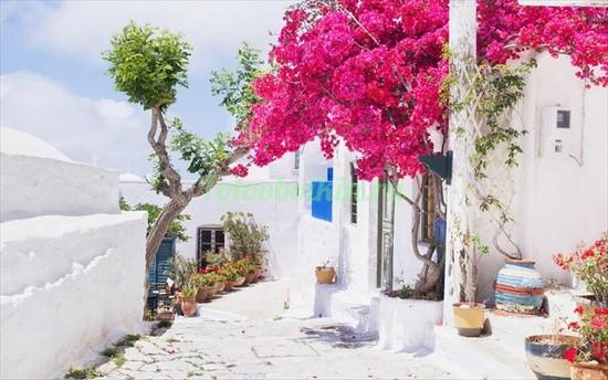 Белый дворик в Греции днем