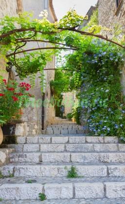 Лестница вверх к домику