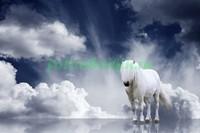 Белая лошадь на фоне облаков