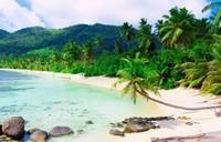 Пляж у теплого моря