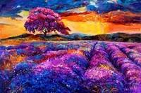 Лавандовый закат