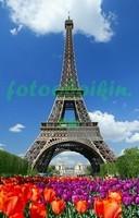 Эйфелева башня и тюльпаны