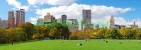 Нью-Йорк зеленый парк