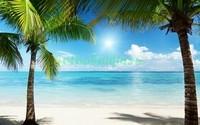 Две пальмы 3Д