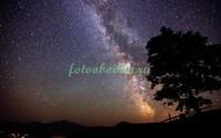 Звездное небо в степи