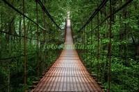 Подвесной железный мост