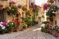 Улочка с цветами