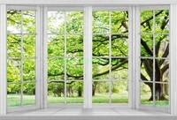 Большое окно с видом на парк
