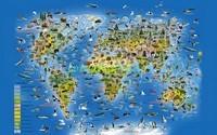 Карта живой мир