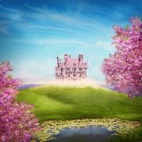 Замок в далеке