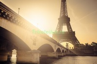 Мост и Эйфелева башня