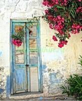 Двери с цветами во дворе