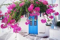 Синяя дверь в цветах
