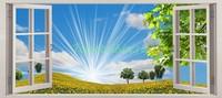 Яркое солнце в поле